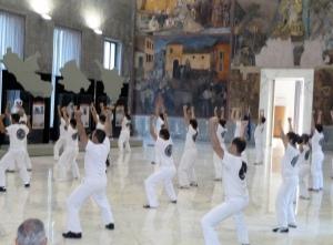demo 02-07-16, roma, museo, una notte di kung fu al museo-695