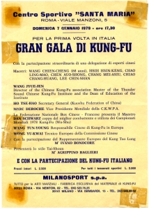 gran gala kung fu